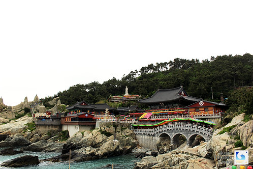 B. Busan 1-Day Tour w/ Lunch and Fees included