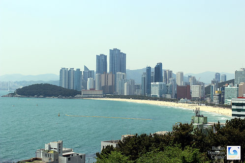 Busan 2-Day Tour w/ Lunch and Fees included