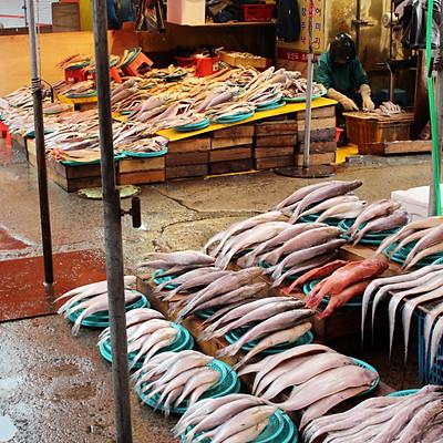 Jagalchi Market ( Fish Market )