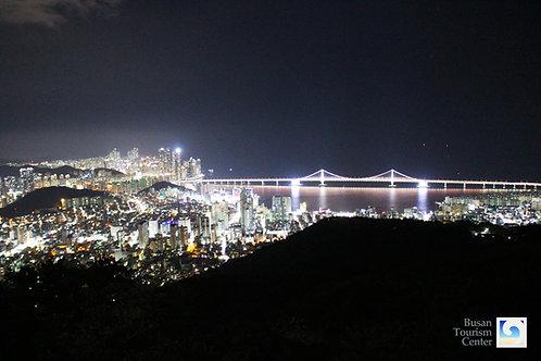 Busan 1-Night Tour inc. a Boat tour