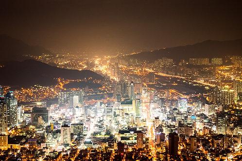 Busan 1-Night Market Tour