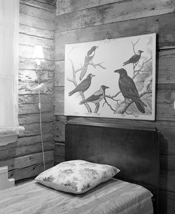 Musician's Summer Home - interior