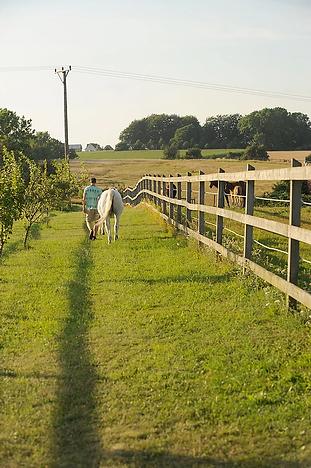 farm5.webp