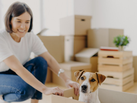 Marketing to New Movers Now