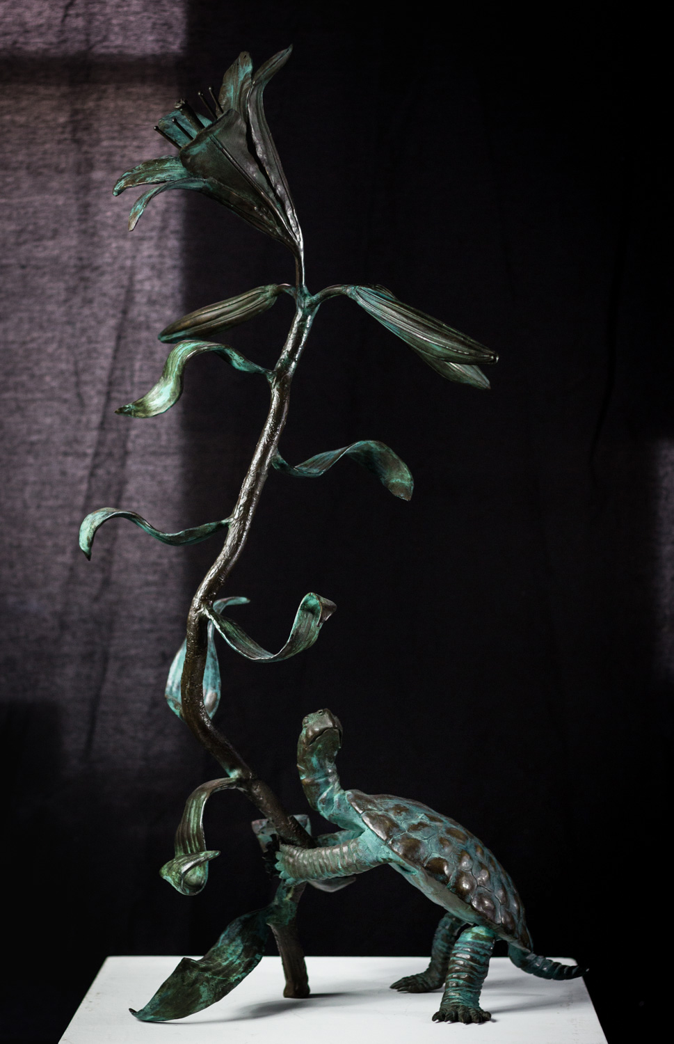 Turtle with Large Lilly, by Frank Fleming, Bronze, Purchase by the Foundation