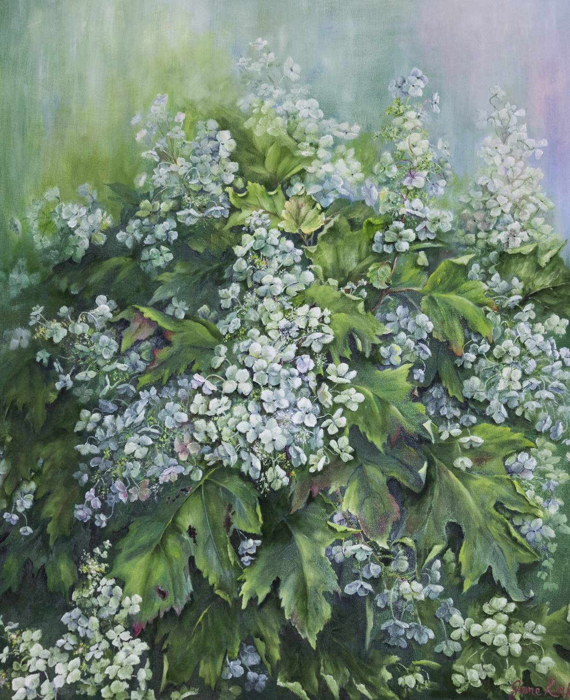 Hydrangeas by Jane Kirk, Oil, Donation