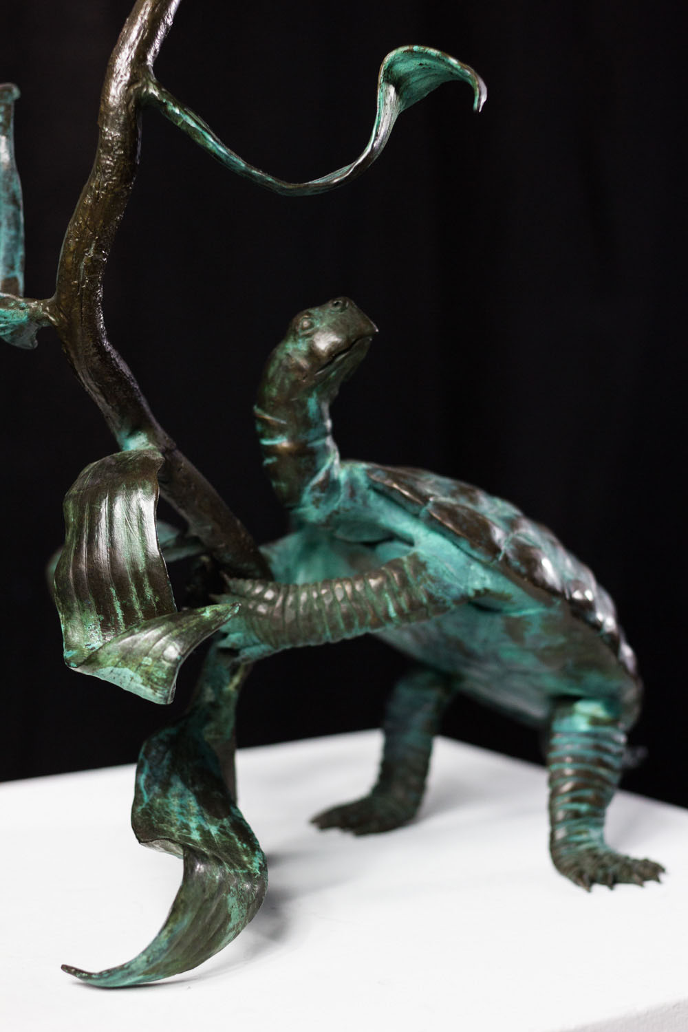 Turtle with Large Lilly, by Frank Fleming, Bronze, Purchase by the Foundation (2)