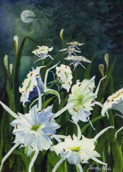 Cahaba Lilies by Moonlight, Frances Ross, Watercolor, Donation