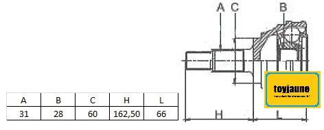 TETE de CARDANExt: 31 cannelures / Int: 28 cannelures - Sans bague ABS MCV-5N11