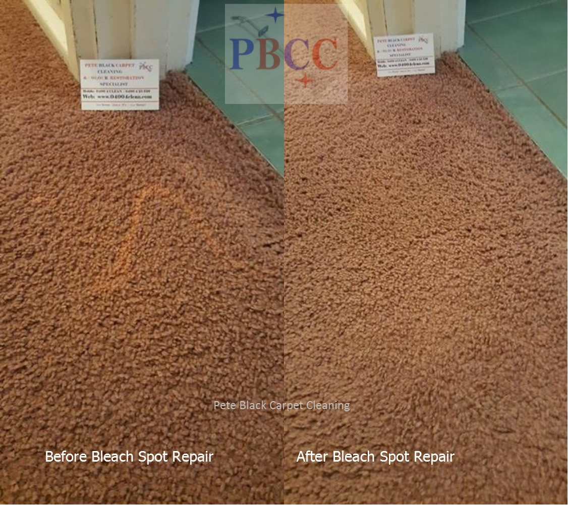 Removal Of Bleach From Carpet Pete Black Carpet Cleaning Colour