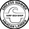 logo endless summer.jpg