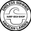 logo endless summer.jpg