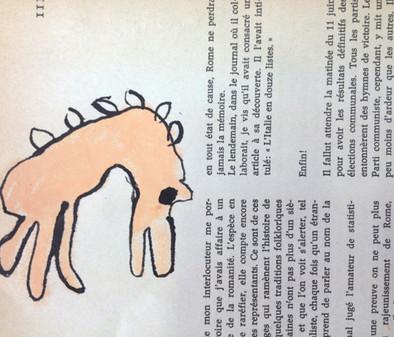 ANIMAL MYSTERE / Ecoles de Mosset et Sahorre