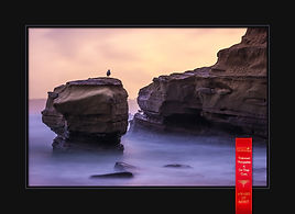 San Diego Photographer Award