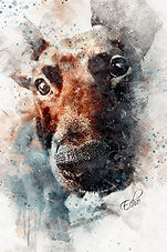 PawArt Watercolor  |  Echo