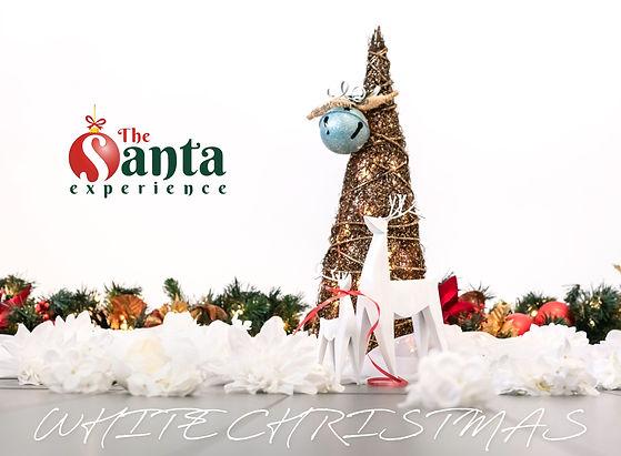SE Promo Image (Reindeer)-2.jpg