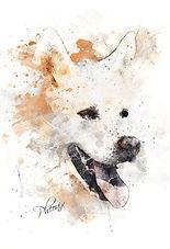 PawArt Watercolor
