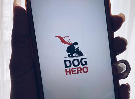 Dog hero - app