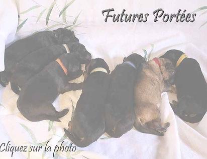 futures_portées.jpg