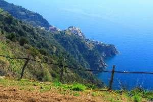 Riomaggiore: lavori sul sentiero da Volastra a Porciana