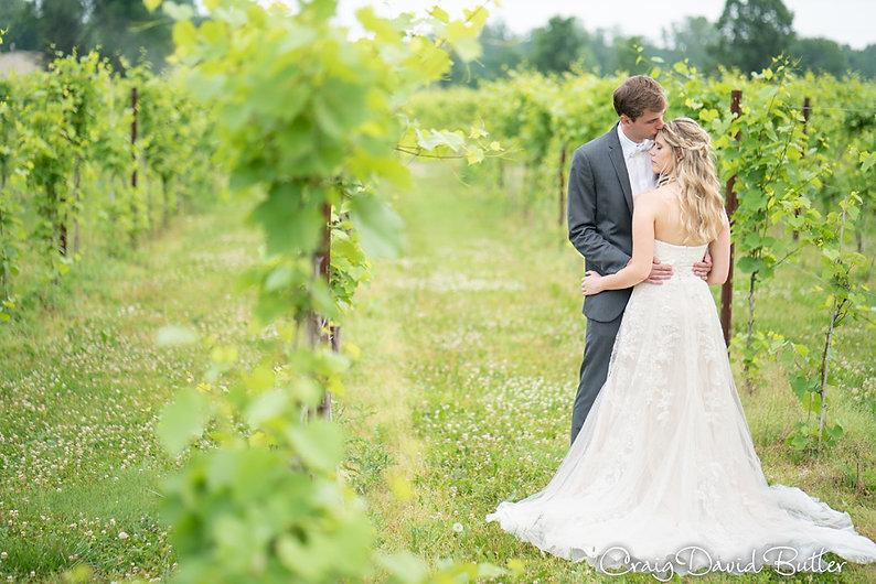 Michigan vineyard winery wedding
