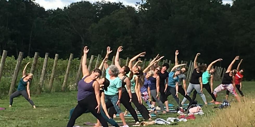Sunset Vineyard Yoga