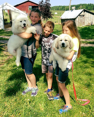 Family with furry friends