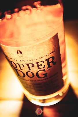 Copper-Dog-Renaissance-Spirit-South-spirit-experience.jpg