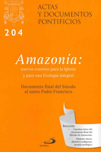 Amazonía: nuevos caminos para la Iglesia y para una Ecología integral