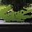 Thumbnail: Baby Alligator (3 pc) puzzle