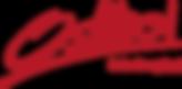 Logo Osttirol (2018).png