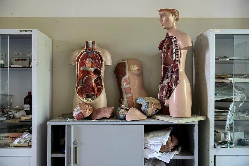 Liver disease diagnostics