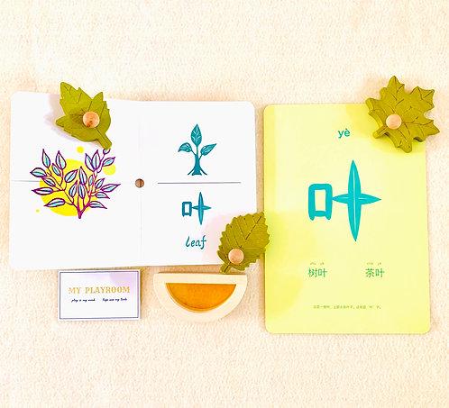 Classroom Mandarin Card  甲骨文大字卡
