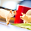 Thumbnail: Large White Pig Figurine