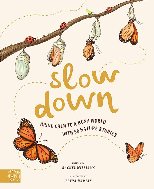 Slow Down (Hardcover)