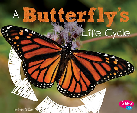 A Butterfly's Life Cycle - Explore Life Cycles (Paperback)