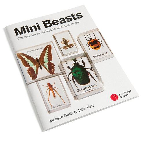Mini Beasts Book