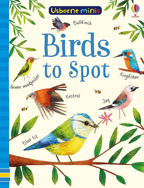 Mini Books: Birds to Spot (Paperback)