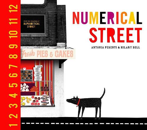 Numerical Street (Hardcover)