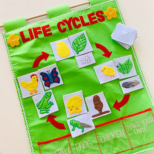 Life Cycles of Chick, Frog , Butterfly Wall Hanging