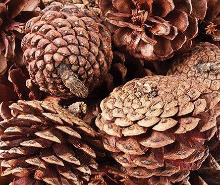 Medium-Large Pine Cones 200g