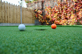 Family Lawn and Golf Green