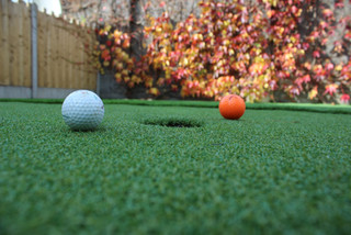 Garden Grass and Golf
