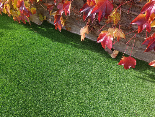 Vision Deluxe artificial lawn