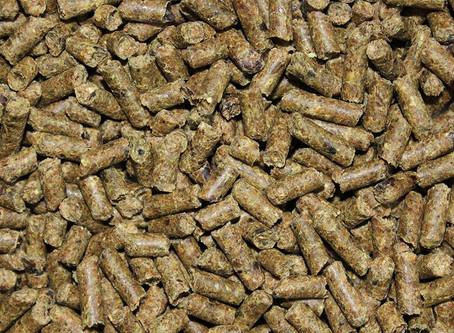 equine feed: Poulin grain's e-tec one