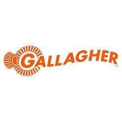 square-gallagher