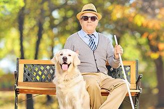 Senhor cego sentado segurando uma bengala ao lada de seu cão guia da raça golden retriver na cor bege