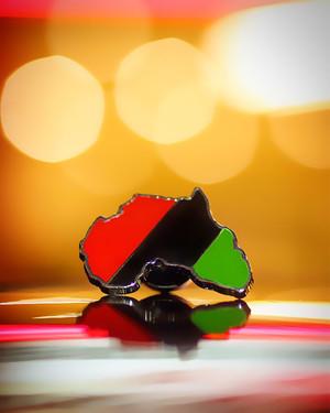 13.  Africa Pin.jpg