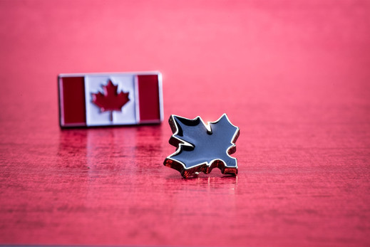16. Canada Pins.jpg