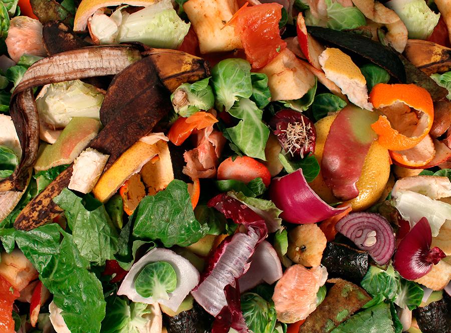 1-compostagem